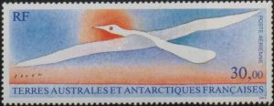 Albatross, Terres Australes et Antarctiques Francaises, 1990. David Lank Collection, McGill University Library.