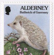 Hedgehog Stamp, Guernsey, 1994.