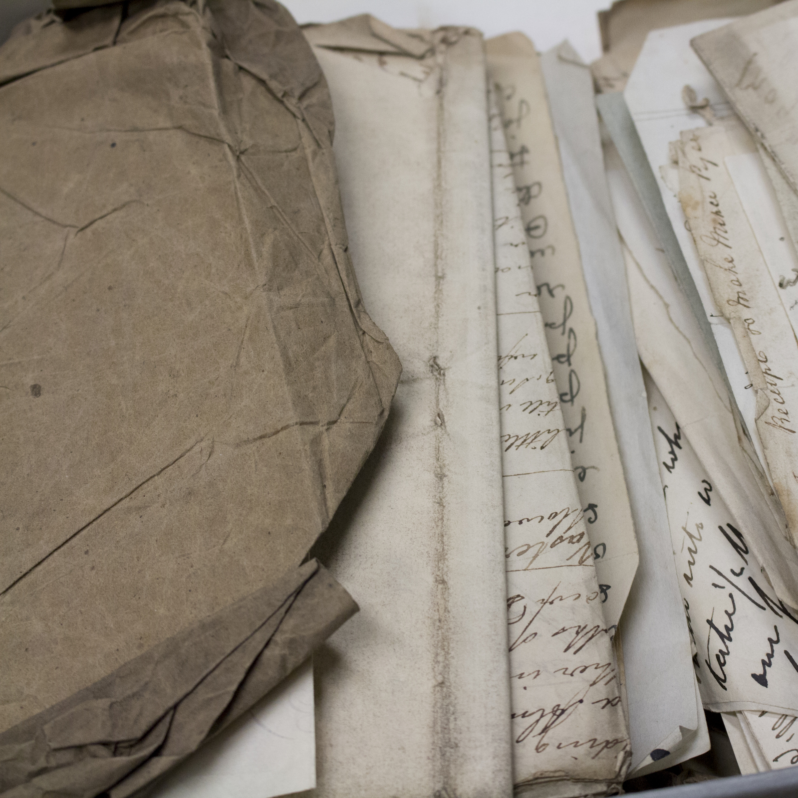 Doncaster Manuscript Collection, McGill Library. Photo: Lauren Goldman