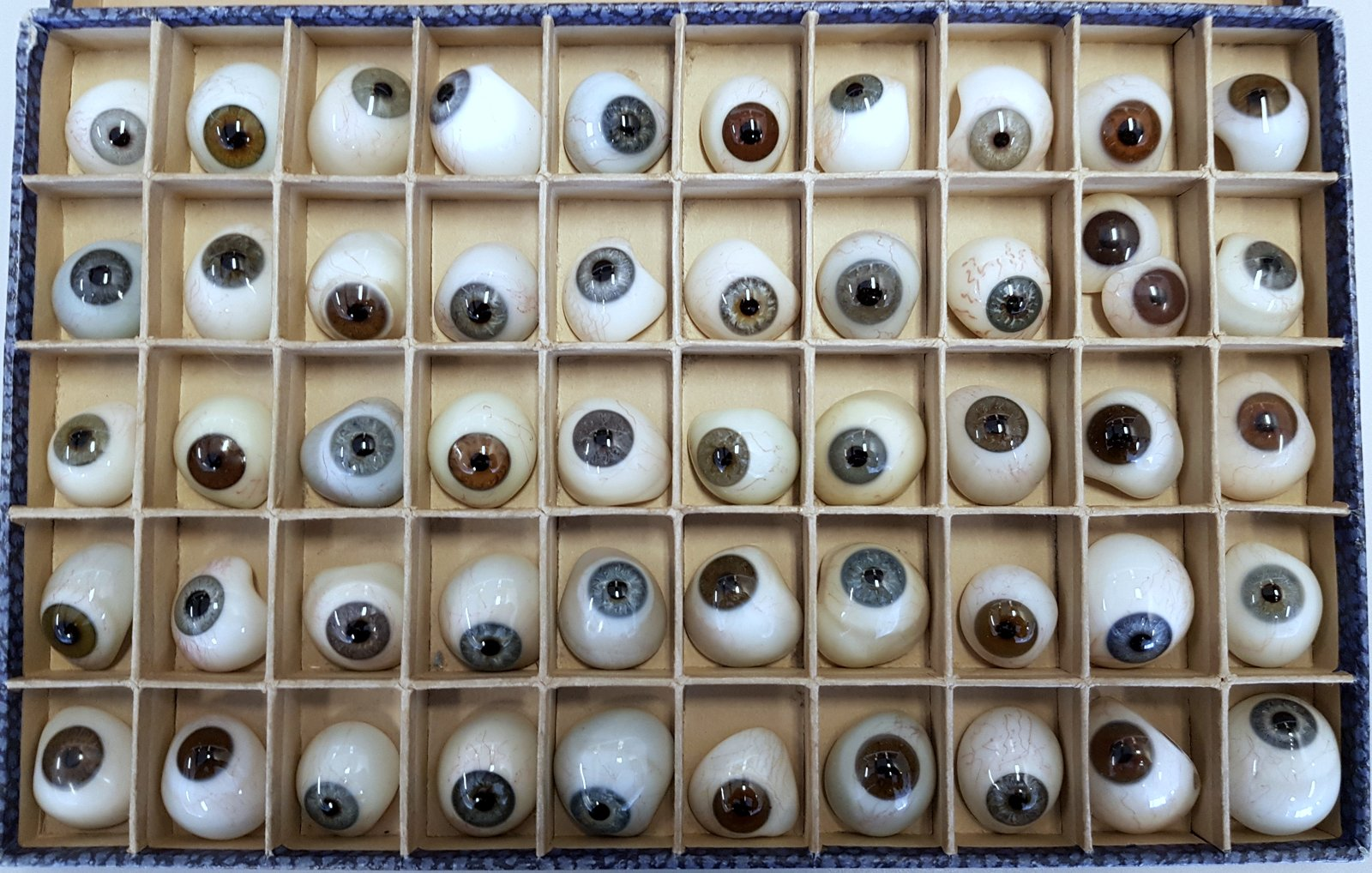 Figure 1 : Échantillon d'yeux prothétiques d'un représentant de l'entreprise, vers 1885.