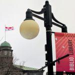 McGill Library Biblio banner