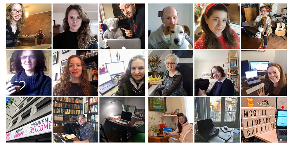 Thumbnails of librarians in their home offices.